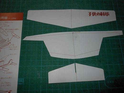 DSCN9571_20200602212351f10.jpg