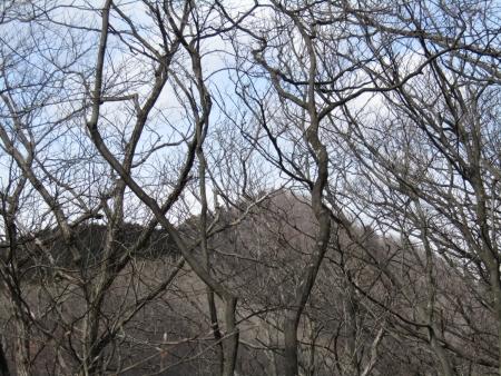 200320高原山~尾出山 (20)尾出山s