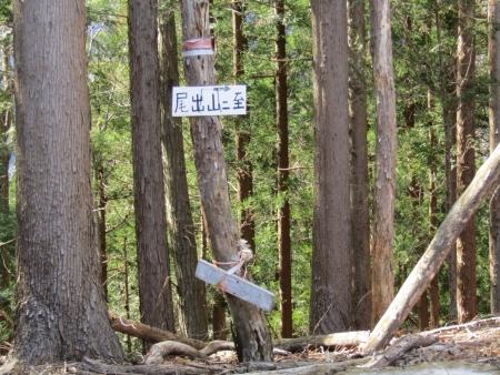 200320高原山~尾出山 (34)s