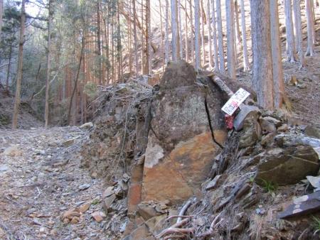 200320高原山~尾出山 (36)s