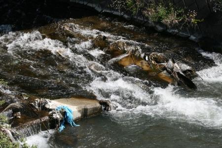 200429滝川下流 (6)s