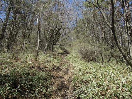 200508_02穴山 (4)s