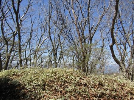 200508_02穴山 (12)s