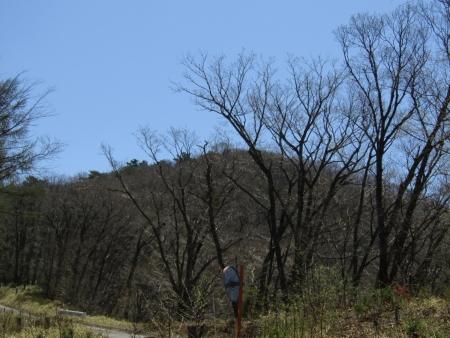 200508_03丸山 (1)穴山s