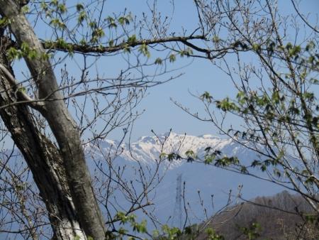 200508_03丸山 (11)武尊山s