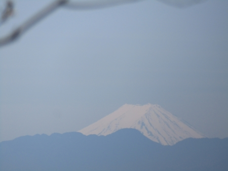 200508_03丸山 (15)富士山s