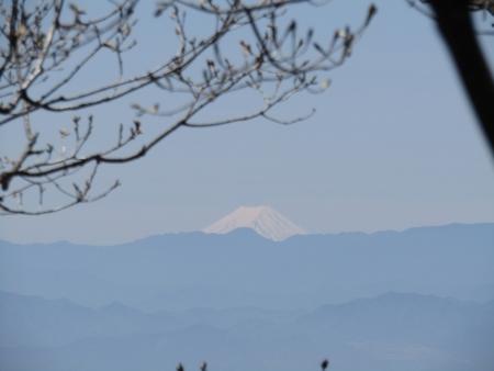 200508_03丸山 (18)富士山s