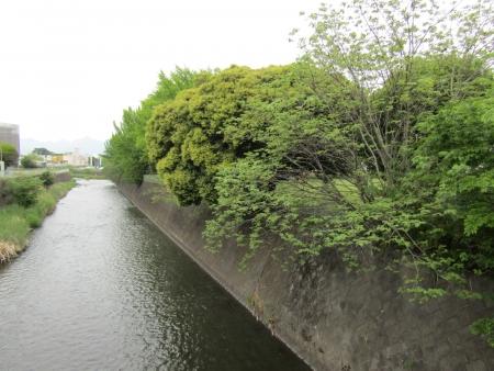 200509滝川上流 (9)s