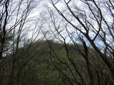 200510三ツ峰山・旭岳 (27)三ツ峰山s
