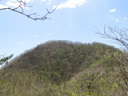 200510三ツ峰山・旭岳 (57)三ツ峰山s
