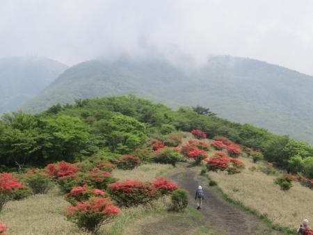 200603荒山~鍋割山~前浅間 (21)s