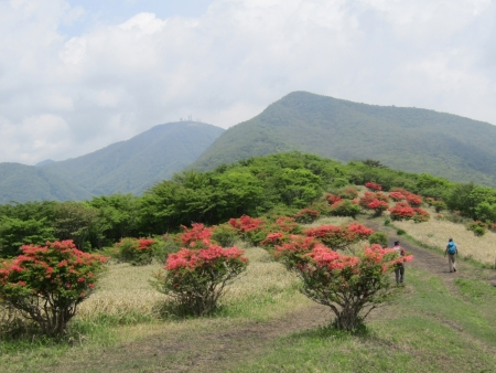 200603荒山~鍋割山~前浅間 (28)荒山・地蔵岳s