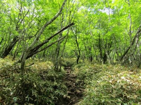 200607地蔵岳_小沼一周 (5)s
