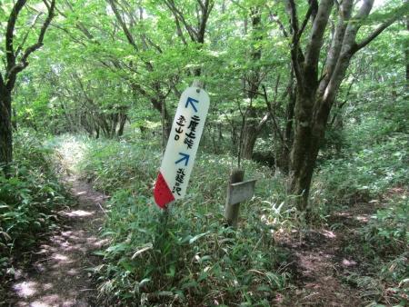 200616浅間隠山と周辺 (7)s
