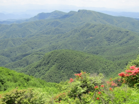200616浅間隠山と周辺 (31)鼻曲山s