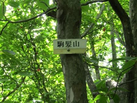 200616浅間隠山と周辺 (46)駒髪山s