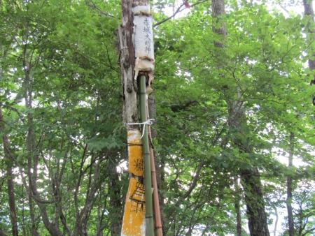 200705五輪尾根 (20)s