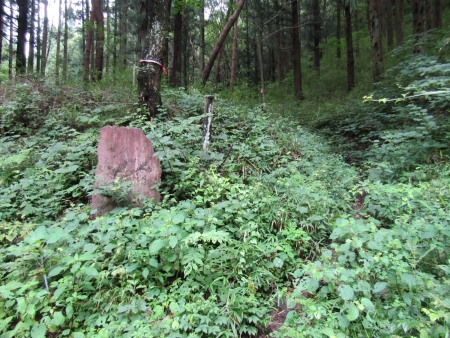 200802天狗山~鏡台山 (4)s