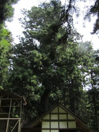 200810栗生山 (4)s