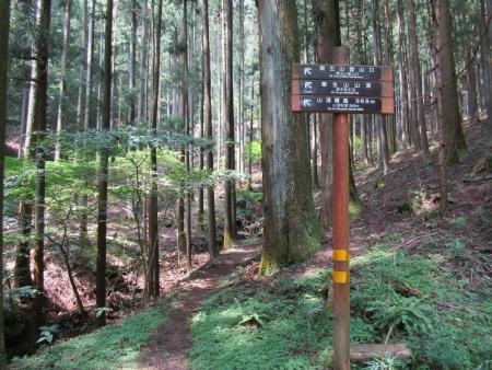 200810栗生山 (6)s