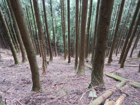 200810栗生山 (27)s