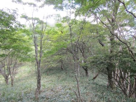 200909鈴ヶ岳・鷹巣 (32)s