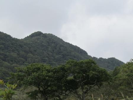 200916地蔵岳 (48)鍬柄山・鷹巣s