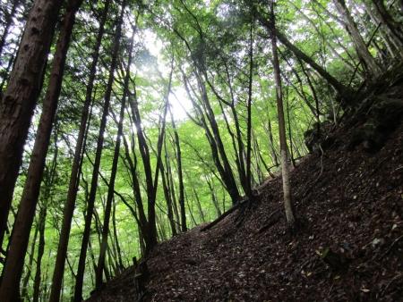 200921稲含山・黒内山 (2)s