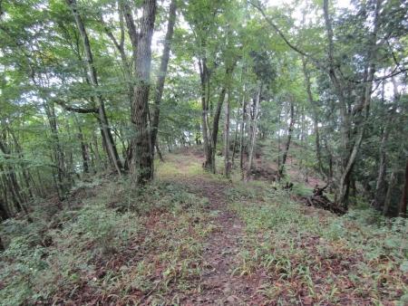 200921稲含山・黒内山 (17)s