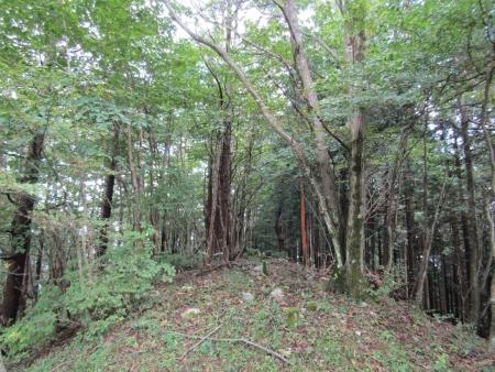 200921稲含山・黒内山 (22)s