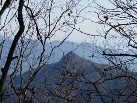 201101鼻曲山・満天山 (6)雨坊主山s