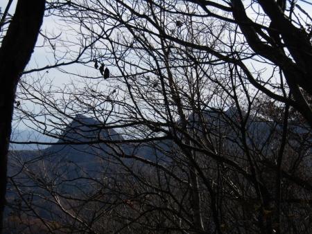 201101鼻曲山・満天山 (7)角落山・剣ノ峰s