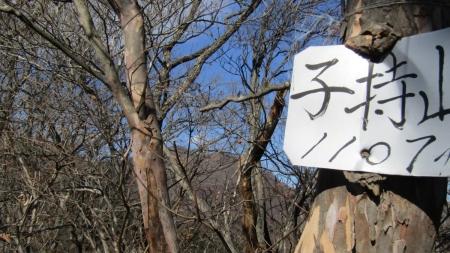 201122碓氷峠~一ノ字山~子持山 (34)浅間隠山s