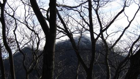 201129矢ヶ崎山~東矢ヶ崎山 (9)東矢ヶ崎山s
