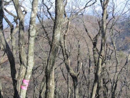 210214木津山 (5)木津山s