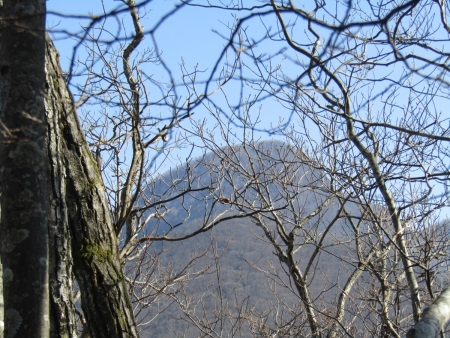 210214木津山 (17)鈴ヶ岳s