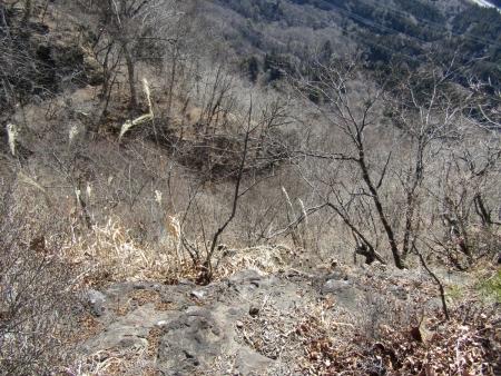 210228山急山~中尾山~東矢ヶ崎山 (29)s
