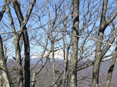 210228山急山~中尾山~東矢ヶ崎山 (40)浅間山s