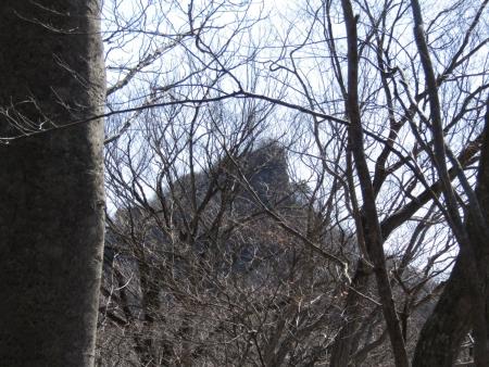 210228山急山~中尾山~東矢ヶ崎山 (47)山急山s
