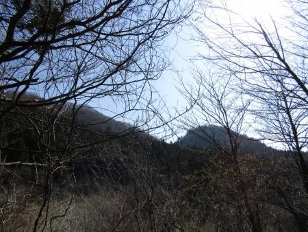 210411鷹ノ巣山 (2)鷹ノ巣山s