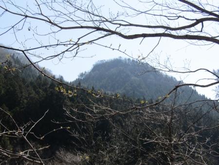 210411鷹ノ巣山 (3)鷹ノ巣山s
