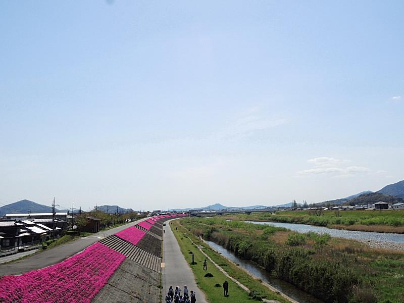 bDSCN8468.jpg
