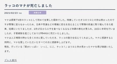 20210223_マナちゃん死亡記事