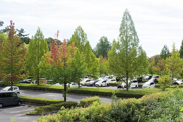 牧野が池緑地駐車場