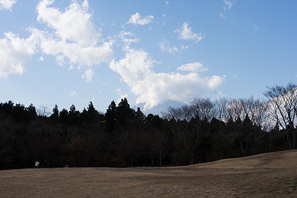 富士山足柄SA
