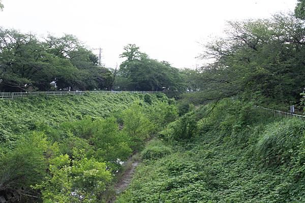 緑の香流川