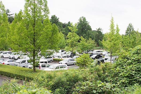 緑の牧野が池駐車場