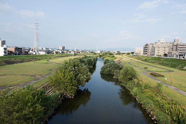矢田川夏の風景