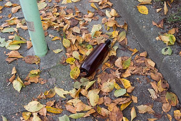 落ち葉と空き瓶