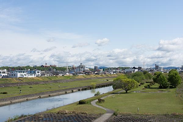 矢田川春風景